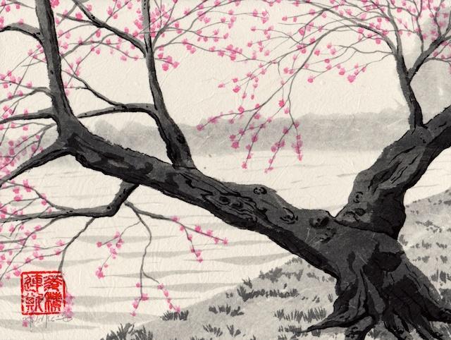 cherry trees #1