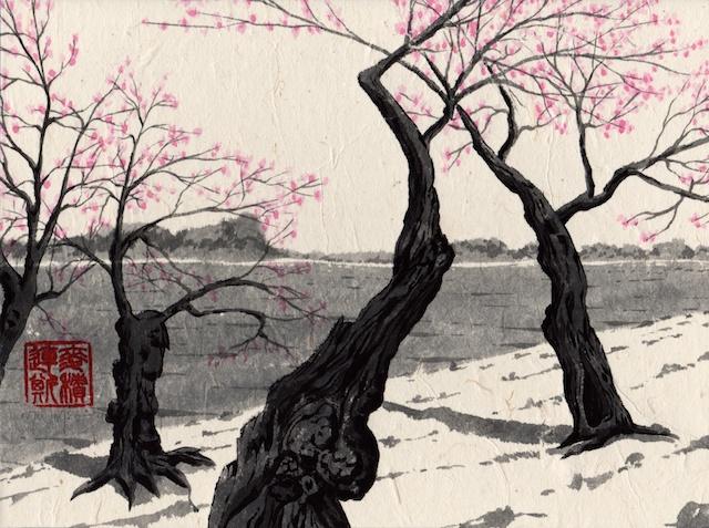 cherry trees #5