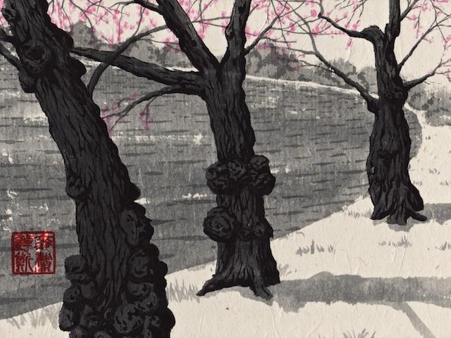 cherry trees #9