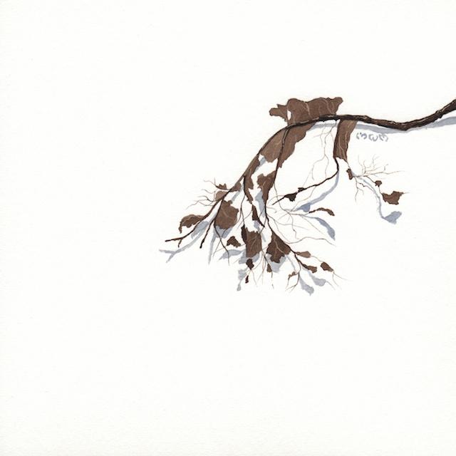 23 poplar leaves 400 - 2013-11-04 at 13-59-38