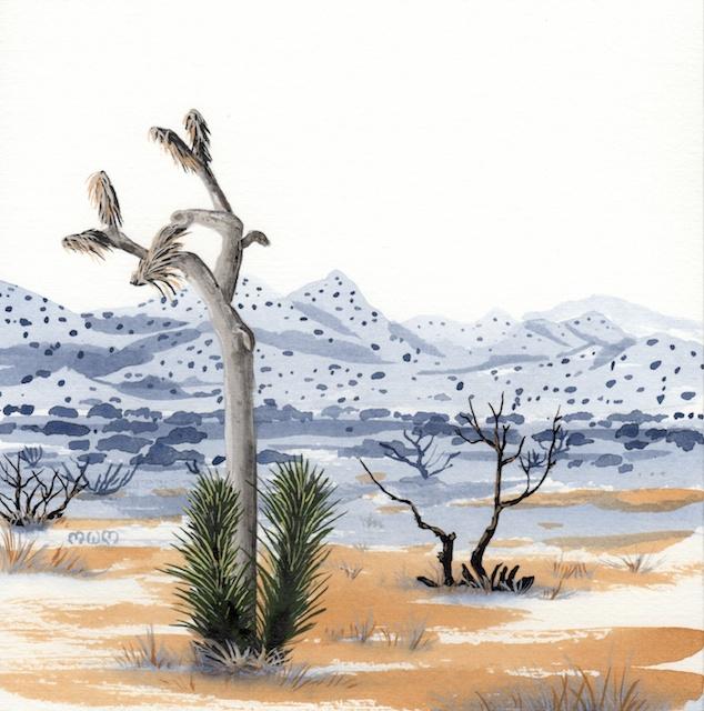 joshua tree - new joshua tree - 2014-02-10 at 13-27-56