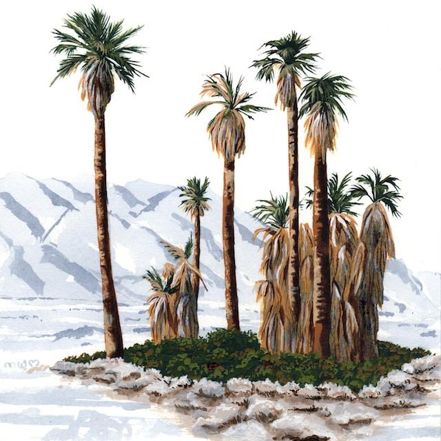 joshua tree - oasis of mara - 2014-01-22 at 10-51-34