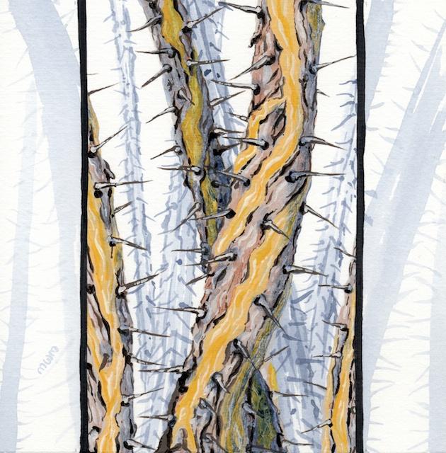 joshua tree - octotillo poles  - 2014-02-10 at 13-49-11