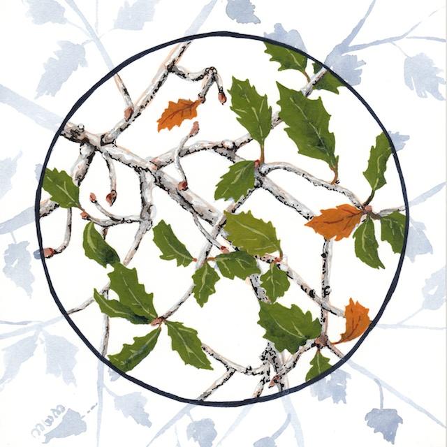 joshua tree - turbinella oak leaves - 2014-01-22 at 10-47-03