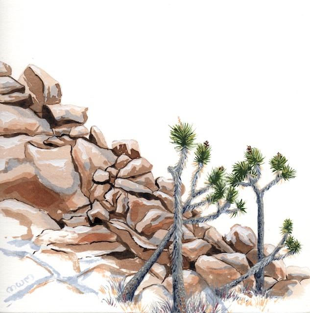 joshua tree - wonderland 3 - 2014-01-22 at 10-39-40