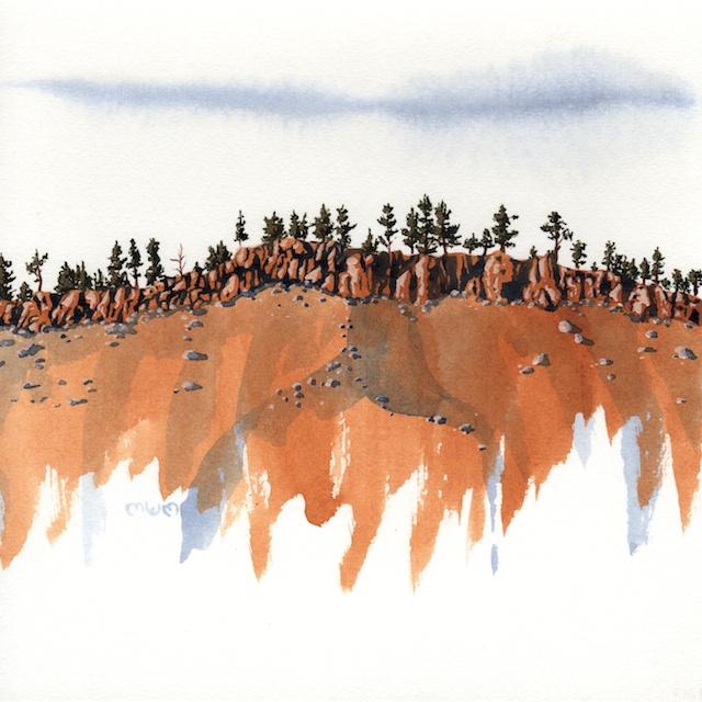 ponderosa pine 7 - 2014-03-14 at 16-14-03