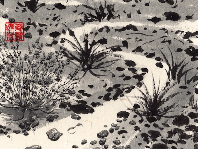 joshua tree black ink #7 - desert wash - 2014-04-08 at 10-32-57