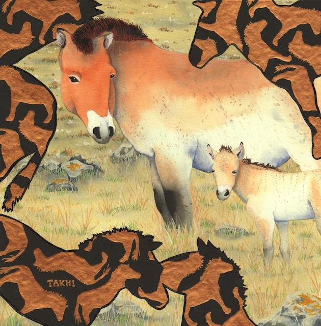 "Takhi, 12"" X12"", acrylic on paper, 2014, Mark W. McGinnis"