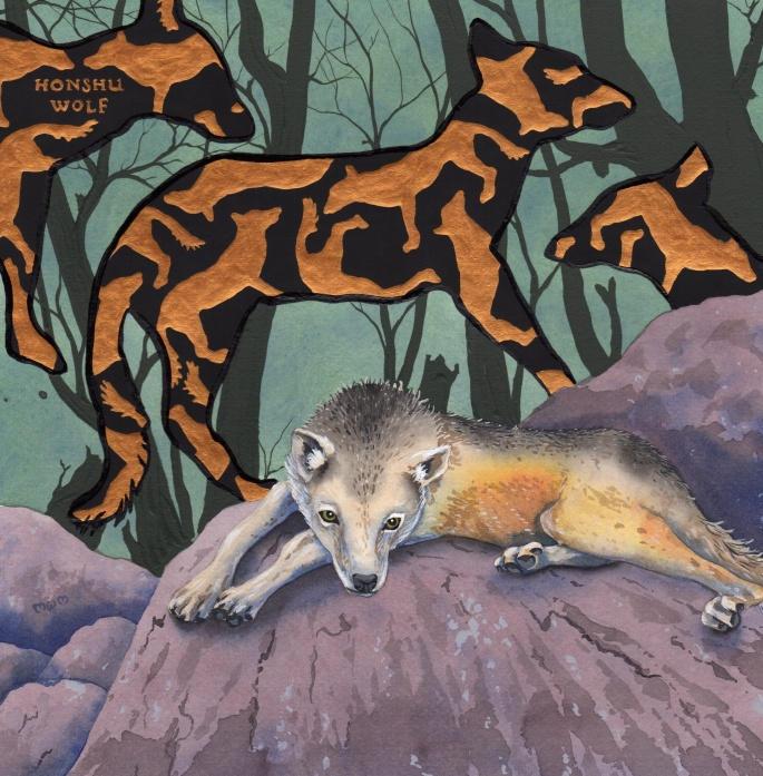 extinct - honshu wolf - 2015-05-23 at 15-45-07