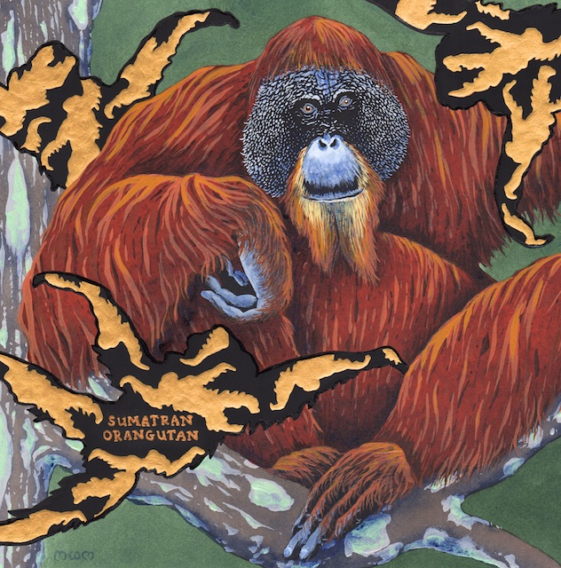 extinct - sumatran organutan - 2015-06-10 at 09-45-35