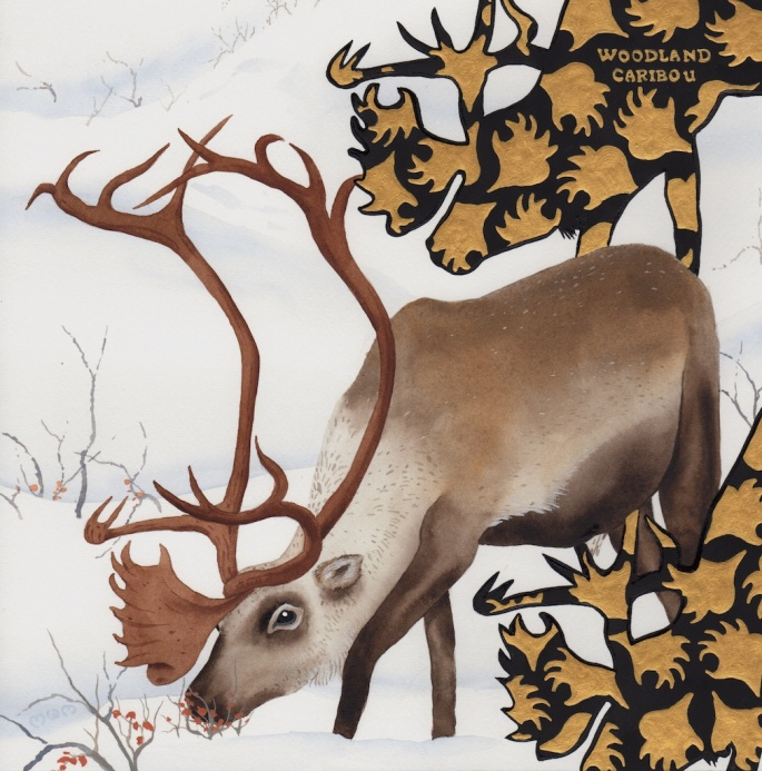 extinct - woodland caribou - 2015-11-24 at 11-49-49
